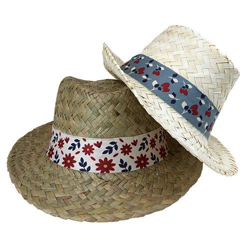 Zelio-chapeau